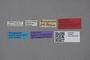 2819061 Atheta kanagawa ST labels IN