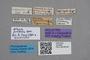 2819090 Atheta pretiosa HT labels IN