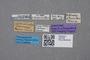 2819108 Atheta silvestris ST labels IN