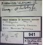 Neocrisus ireneei HT  labels