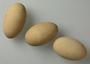 Tabon Scrubfowl egg