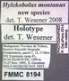 8194 Hylekobolus montanus HT IN labels