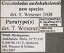 43813 Granitobolus andohahelensis PT IN labels