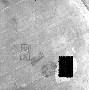 126218: inscription [from circular box