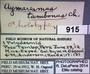 915 Aymaresmus tampocus HT IN labels