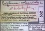 532 Euplinus volcanicola HT IN labels