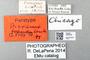 2840740 Dicrania fraudulenta PT IN labels