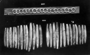 236296: bronze shells for girdle