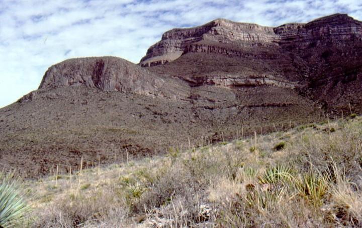 Mississippian Muleshoe mud mound west Texas.