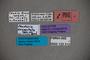 123312 Fenderia exspectata HT labels IN