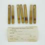 Calamus rotang L., Cigarette Holder, Indonesia, C. F. Millspaugh, F