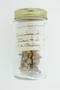 Petrea arborea Kunth, TRINIDAD AND TOBAGO, W. E. Broadway, F