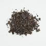 Theobroma cacao L., Panama Cocoa, PANAMA, F