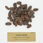 Theobroma cacao L., Cacao cameta, Brazil, B. E. Dahlgren, F