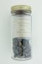 Fucus vesiculosus L., Kelp Soda, Ireland, F