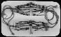152399: Bracelets (?) of Kagaba Arhuaco
