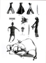 176446: bone shoulder blade