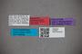 2819832 Sonoma mayori HT labels IN