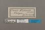 124571 Sevenia pechueli labels IN