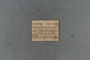 IMLS Silurian Reef Digitization Project, Image of a Silurian brachiopod label PE 77099