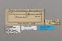 124686 Perisama bomplandii equatorialis labels IN
