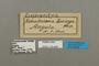 124840 Euphaedra losinga labels IN