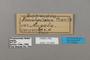 124864 Euphaedra campaspe labels IN