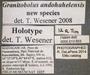 13603 Granitobolus andohahelensis HT IN labels