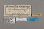 125636 Forbestra olivencia olivencia labels IN